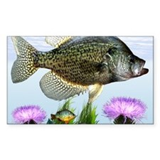 Crappie art Decal