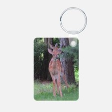 White-tailed Deer (1)? Keychains