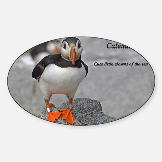 calendar    dec   cover Sticker (Oval)