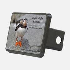 calendar    dec   cover Hitch Cover