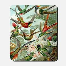 Beautiful Hummingbirds Art Mousepad