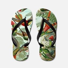 Beautiful Hummingbirds Art Flip Flops