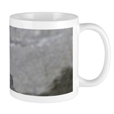 14x6_print 2 Mug