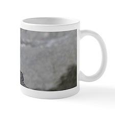 14x6_print 2 Small Mug