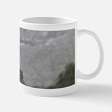 14x6_print 2 Small Small Mug