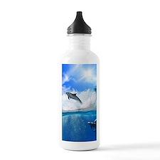 Dolphin Water Bottle