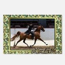 American Saddlebred Horse Postcards (Package of 8)