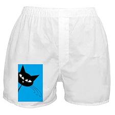 Sneaky Kitty Boxer Shorts
