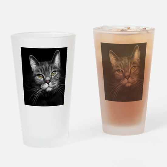 Curious Tabby Drinking Glass