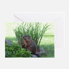 Groundhog in garden Greeting Card