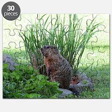 Groundhog in garden Puzzle