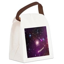 purpleornament1 Canvas Lunch Bag
