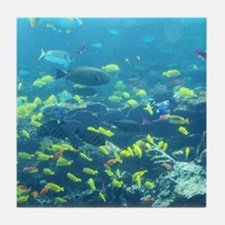 Atlanta Aquarium Tile Coaster