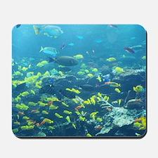 Atlanta Aquarium Mousepad