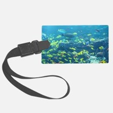 Atlanta Aquarium Luggage Tag