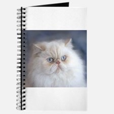Funny Purr Journal