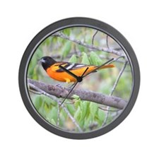 Northern Oriole Wall Clock