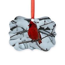 Snow Cardinal Ornament