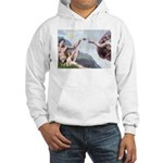 Creation of the Beagle Hooded Sweatshirt