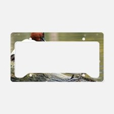 Duck License Plate Holder