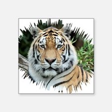 "Tiger 001 Square Sticker 3"" x 3"""
