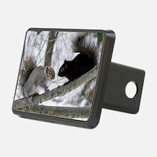 Black Squirrel Hitch Cover