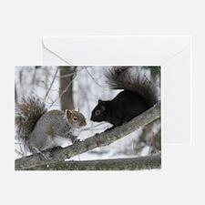Black Squirrel Greeting Card