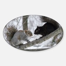 Black Squirrel Sticker (Oval)