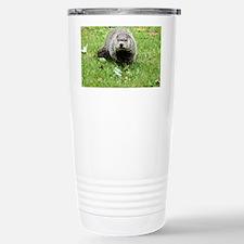 Groundhog eating Travel Mug