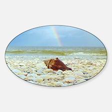 Sanibel Seashells Under The Rainbow Decal