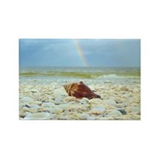Sanibel Seashells Under The Rainb Rectangle Magnet