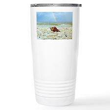 Sanibel Seashells Under Travel Mug