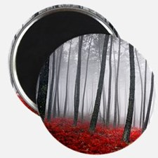 Winter Forest Magnet