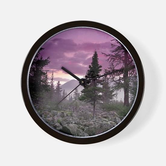 Beautiful Forest Landscape Wall Clock