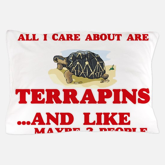 All I care about are Terrapins Pillow Case