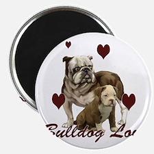 Bullddog Love Magnet