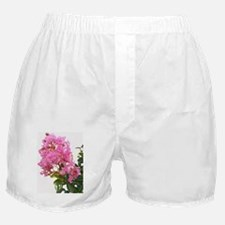 crepe cutout Boxer Shorts