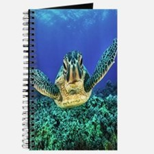 Aquatic Sea Turtle Journal