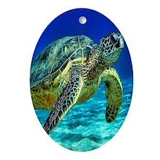 Sea Turtle Oval Ornament