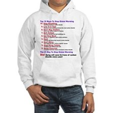 There is no global warming Hoodie