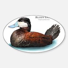 Ruddy Duck Decal