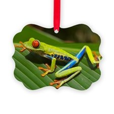 Red_eyed_tree_frog_edit2 Ornament