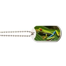 Red_eyed_tree_frog_edit2 Dog Tags