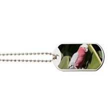 Rose Breasted Cockatoo Dog Tags