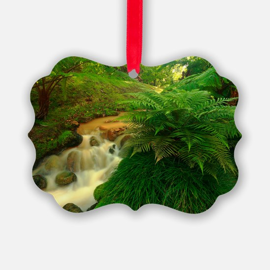 Stream in the forest Ornament