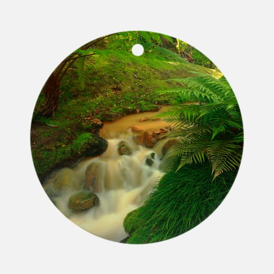 Stream in the forest Round Ornament