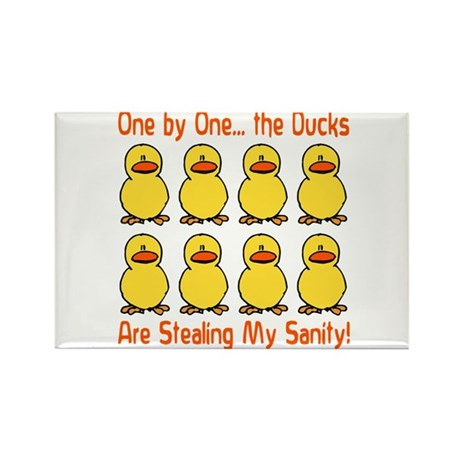 Ducks Stealing My Sanity Rectangle Magnet