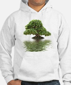 Ficus bonsai with water reflecti Hoodie