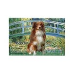 Bridge-Aussie Shep #4 Rectangle Magnet (10 pack)