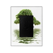 Ficus bonsai with water reflection Picture Frame
